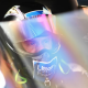 Litton Is Top NHRA Rookie At 61
