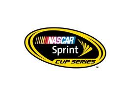 sprint-logo-08