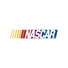 Color nascar logo